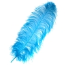 "Ostrich Wing Feathers 18-24"" Premium Qlty 1/2 Lb Turquoise"